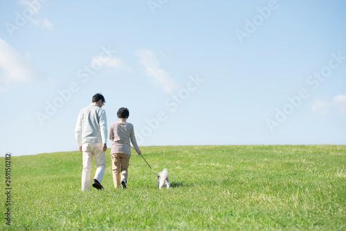 Tableau sur Toile 草原で犬の散歩をするシニア夫婦の後姿