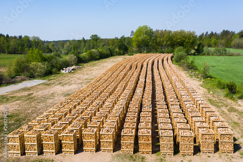 Canvas-taulu Rows of firewood stacked on pallets ready for transport