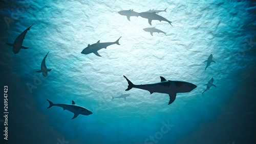 Photo Silhouettes of sharks underwater in ocean against bright light.