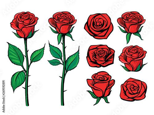 Canvas Print Rose flower set. Floral decoration, valentine greeting card