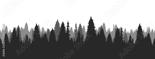 Stampa su Tela Hand drawn pine forest. Christmas banner template.