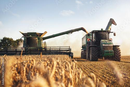 Valokuvatapetti Mähdrescher und Traktor bei der Ernte auf einem Weizenfeld