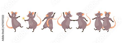 Fotografie, Obraz Dancing rats vector