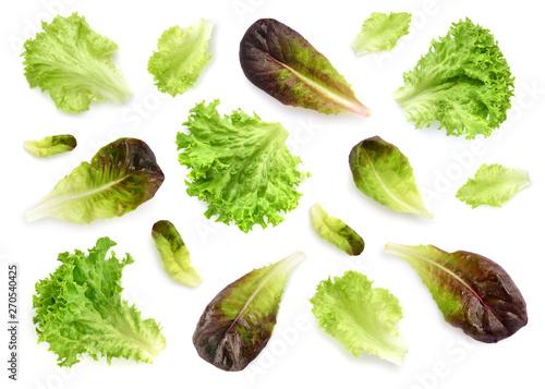 Photo Fresh lettuce leaves isolated on white background