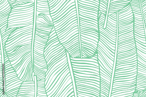 Tropical leaves. Seamless texture with banana leaf. Hand drawn tropic foliage. Exotic green background.