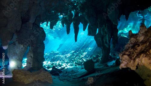 Leinwand Poster Underwater Gran Cenote Yucatan Mexico