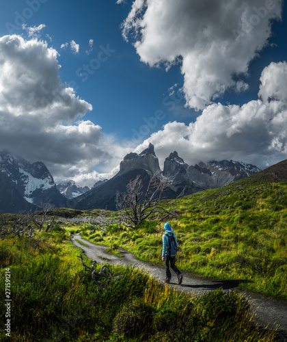 Fotografie, Tablou Woman hiker walks on the trail among the burnt trees with snow capped mountains on the background
