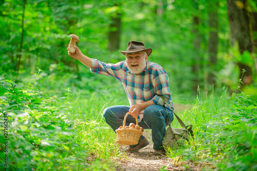 Fotografia Senior picking wild berries and mushrooms in national park forest