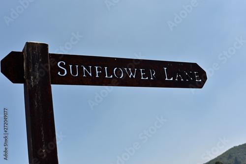Sunflower Lane Sign Fototapete