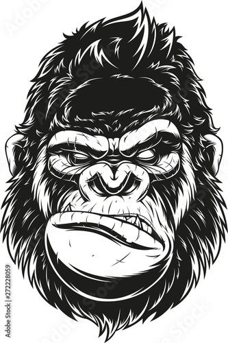 Obraz na płótnie ferocious gorilla head