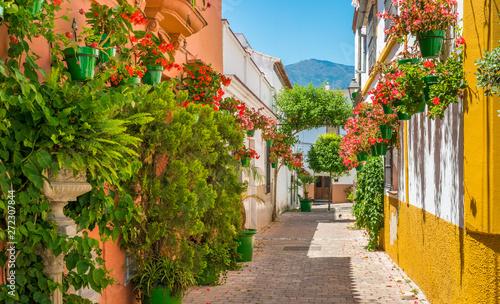 Stampa su Tela The beautiful Estepona, little town in the province of Malaga, Spain