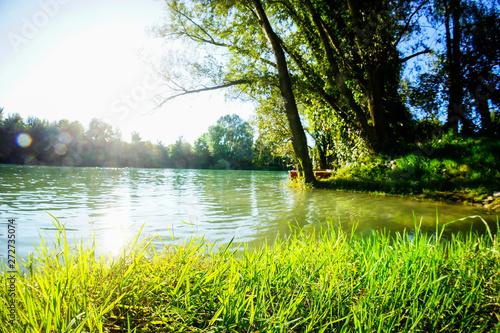Fototapeta Wild Brenta River