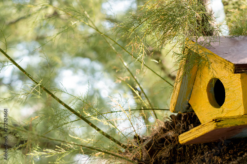 Foto Wooden yellow birdhouse on a tree.
