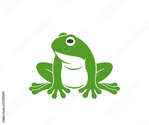 Obraz na plátně Green frog. Abstract frog on white background