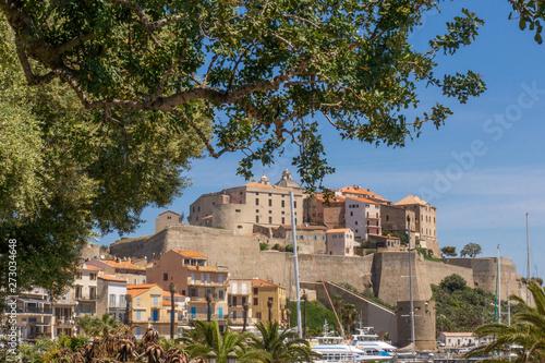 Photo Vue sur la citadelle de Calvi en Haute-Corse