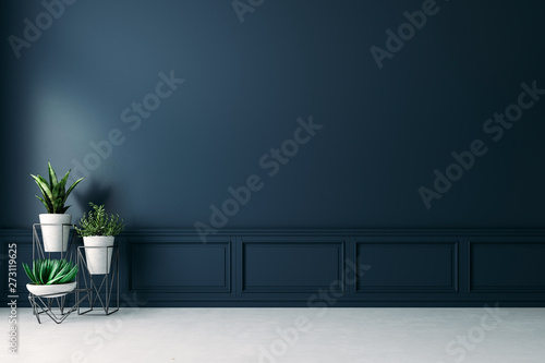 3d empty interior with home plant