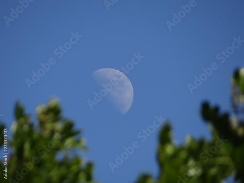 Canvas Luna Cuarto creciente en San Diego 3