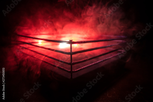 Photo Empty boxing ring with red ropes for match in the stadium arena