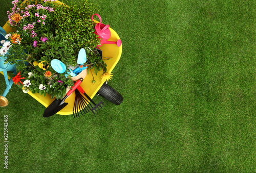 Photo Wheelbarrow with flowers and gardening tools on grass, top view