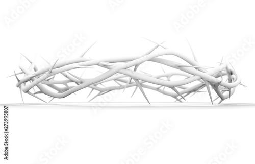 Stampa su Tela Crown Of Thorns White