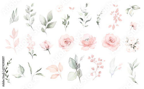 Obraz na plátně Set watercolor elements of pink roses; collection garden flowers; leaves; branches