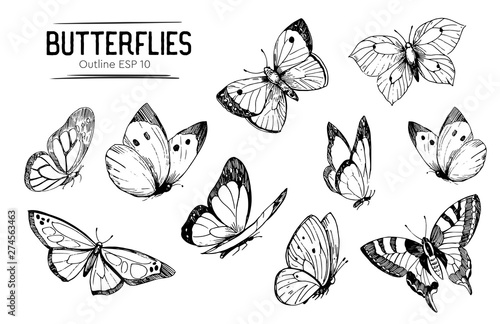 Wallpaper Mural Set of butterflies outlines