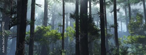 Drzewa we mgle. Dym w lesie rano. Mglisty poranek wśród drzew. Renderowanie 3D