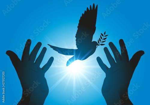 Fototapeta Concept de la paix et de liberté avec deux mains tendues, relâchant un vol de colombes dans le ciel au soleil couchant