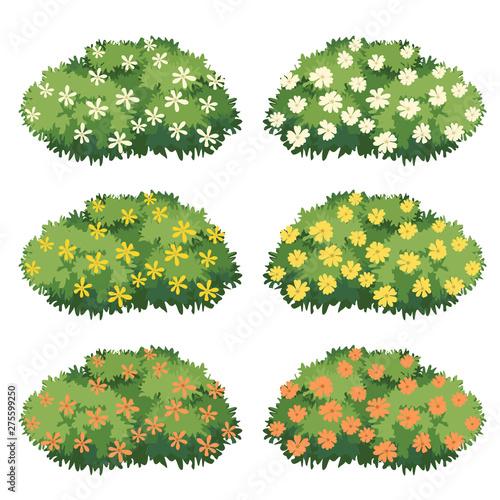 Slika na platnu Shrubs and flowers vector.
