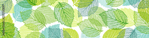 Background with blue and green leaves. Nature banner. Frame with plants. Template