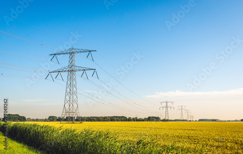 Canvas Print Tall power pylons in a long row