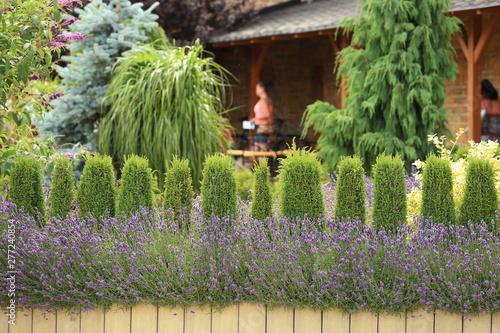 Fioletowa lawenda, kwiaty, przycięte krzewy i ludzie przed restauracją.
