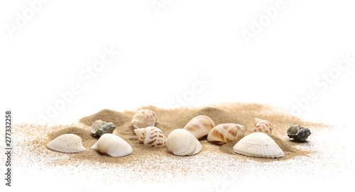 Fotografie, Obraz Sea shells in sand pile isolated on white background