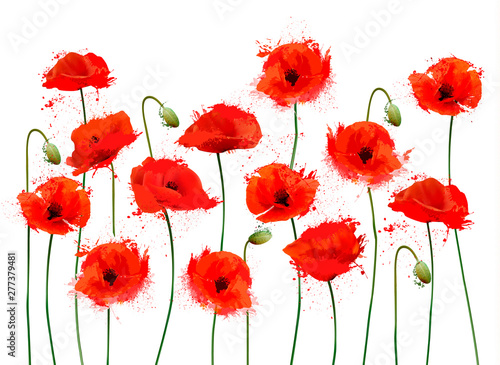 Abstract beautiful background with red romantic blooming poppies flowers. Vector.
