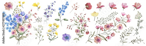 Photo Field flowers
