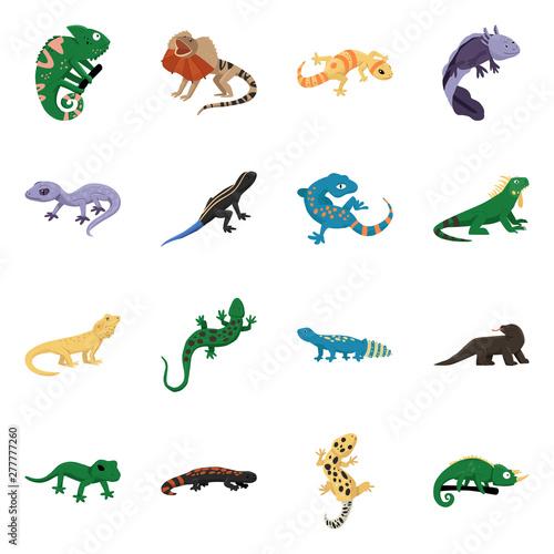 Wallpaper Mural Vector illustration of animal and reptile logo
