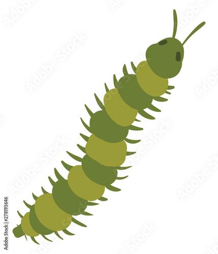Foto Long green centipede, illustration, vector on white background.