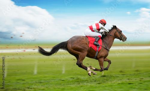 Obraz na płótnie Race horse with jockey on the home straight. Shaving effect.