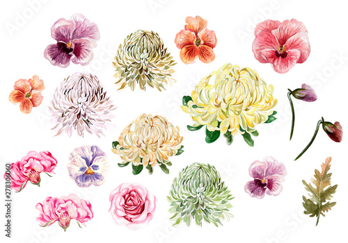 Fotografia, Obraz Watercolor autumn Set with leaves, chrysanthemum, roses and pansies flowers