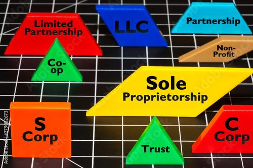 Photo Common business entities and ventures as simple colorful shapes, LLC, Partnerships, S corp, trust, non-profit, sole proprietorship