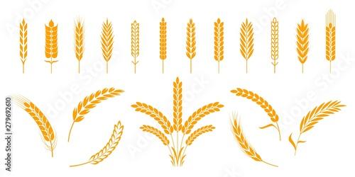 Wheat and rye ears Fotobehang