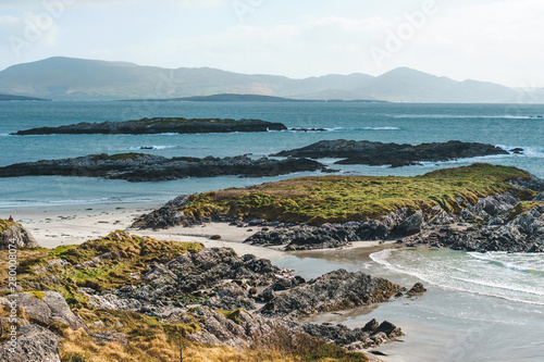 Photo moss on rocks at sea coast
