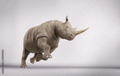 Plakat Szarża nosorożca
