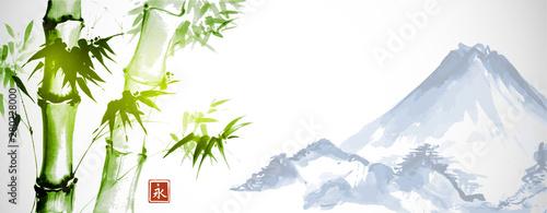 Fotografija Green bamboo and far blue mountains on white background