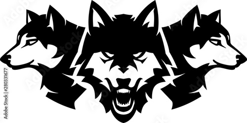 Canvas Print Wolfpack, Wild and Fierce Wolves