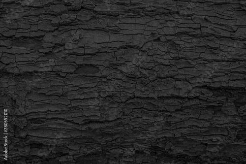 Canvas Print Burnt wooden texture background