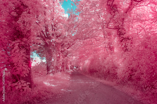 Photo Infrared countryside in England