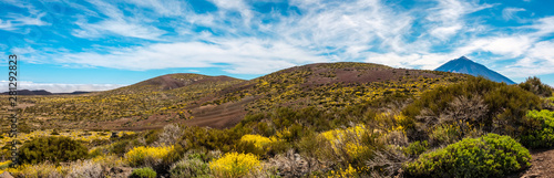Fotografia Panoramic view of the Surroundings of the Teide Astronomical Observatory with th