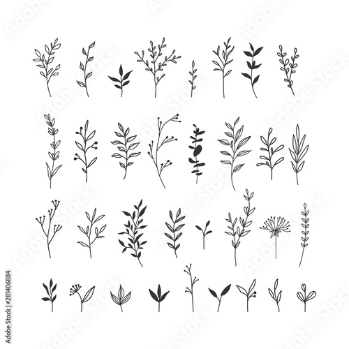 Photo Hand drawn floral illustrations collection on white background