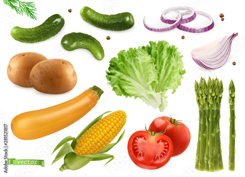 Wall mural Cucumbers, coriander seeds, onions, potatoes, lettuce, zucchini, corn, tomato, asparagus. Vegetables 3d realistic vector set